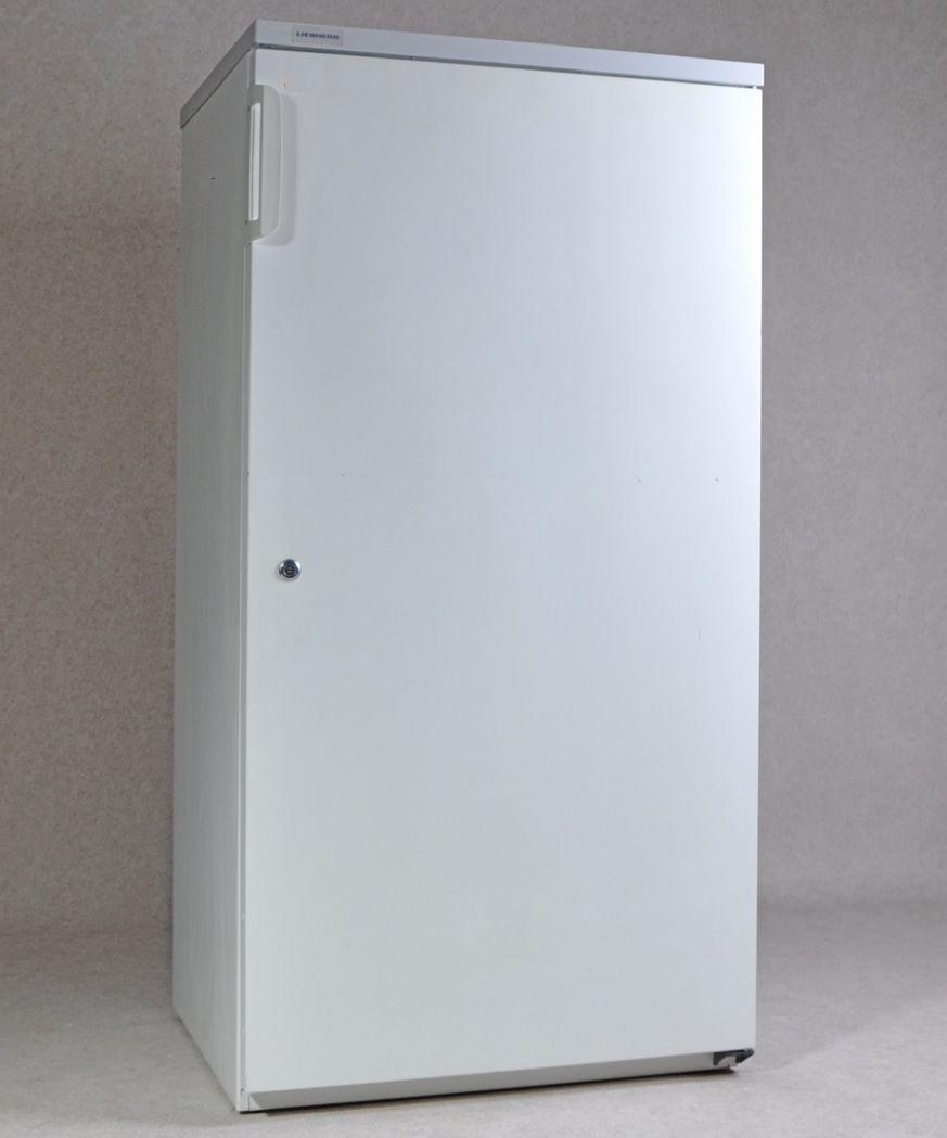 Ungewöhnlich Gewerbekühlschrank Gebraucht Ideen - Hauptinnenideen ...